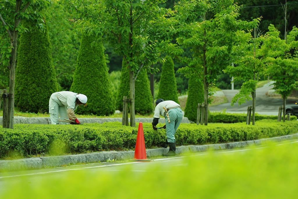 不景気に負けない庭師の仕事~安定している理由とは?~