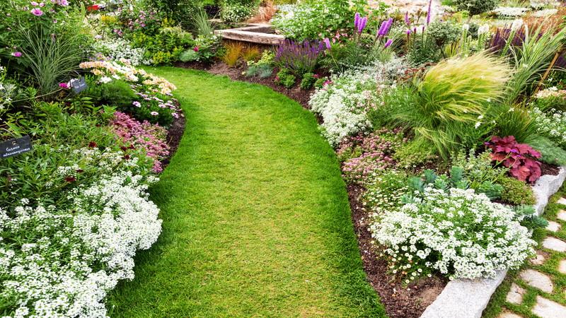 稼頭造園がお庭づくりで選ばれる理由